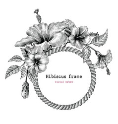 Hibiscus flower frame hand drawing vintage clip vector
