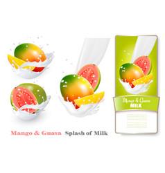 mango and guava in milk splashes vector image