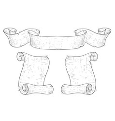 paper scrolls hand drawn sketch in vintage style vector image