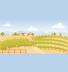 Picturesque vineyard with ripe fruit near farm vector