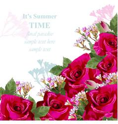 pink roses flower card delicate floral vector image