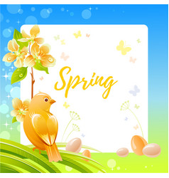 Spring frame with cherry blossom flower canary vector