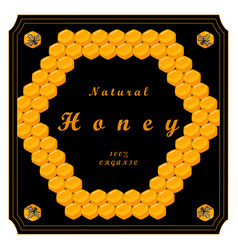 the honey vector image