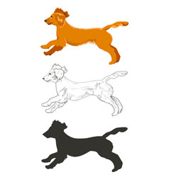 cocker spaniel running in three different styles vector image