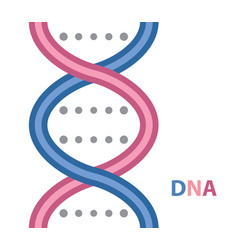 dna cartoon icon vector image