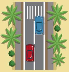 highways top view cartoon vector image