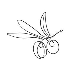 One line drawing olives vector