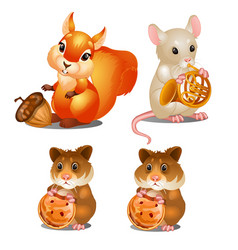 Squirrel mouse and hamsters fairy animals vector