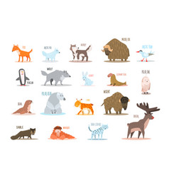 set of arctic and antarctic animals fox wolf vector image vector image