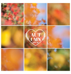 Set Autumn Backgrounds - 9 beautiful patterns vector image vector image