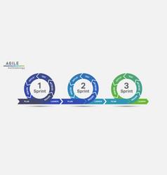 Agile lifecycle development vector