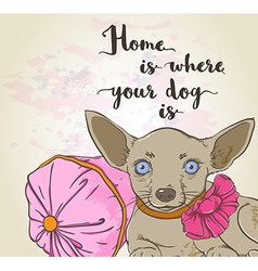 Dog on a pink pillow and lettering vector