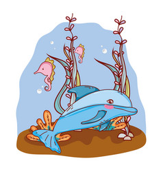 dolphin and seahorses animals with seaweed plants vector image