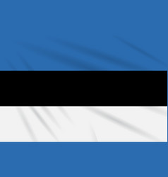 Flag estonia swaying in the wind realistic vector