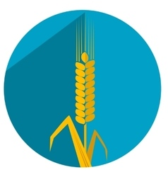 Flat with shadow icon ear wheat vector image