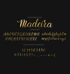 handdrawn script font brush style texture vector image