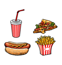 potato fry soft drink cup pizza hot dog vector image