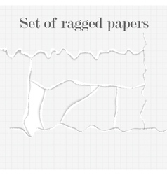 Set of lacerated papers vector