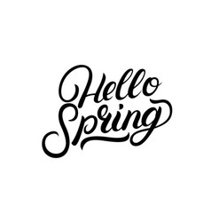 hello spring hand written lettering vector image
