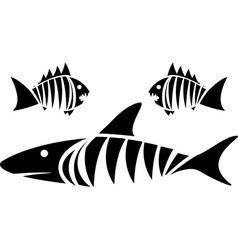 Tiger shark and piranhas vector image