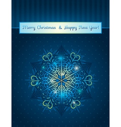 blue background with big snowflake and text vector image