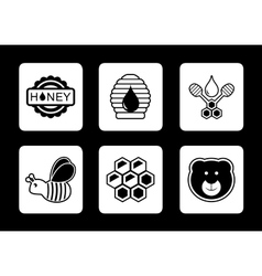 honey concept icons set vector image