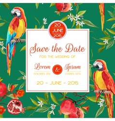 Invitation Congratulation Card Tropical Birds vector image