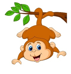 Cute monkey cartoon hanging on a tree branch vector image vector image