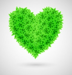 Heart leaf BIO Natural 01 vector image vector image