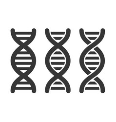 dna or chromosome icons set on white background vector image