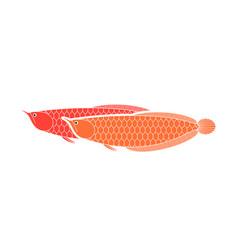Dragon fish vector