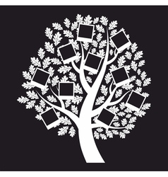 Family genealogical tree on black background vector
