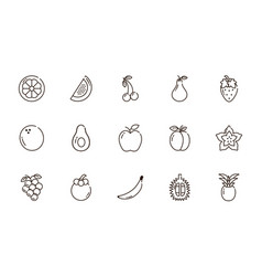 Fresh nutrition harvest fruits icons set line vector