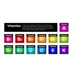 Multi vitamin complex icons set multivitamin vector