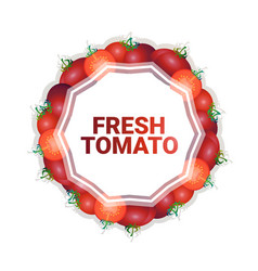 red tomato vegetable colorful circle copy space vector image