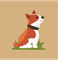 cartoon welsh corgi dog sitting on green grass vector image