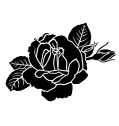 roses flower and bud vector image vector image