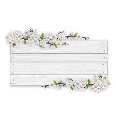 empty white wooden sign with blooming tree branch vector image