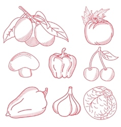 Freehand sketches vector image