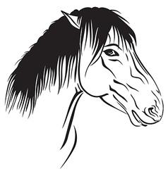 Horse head profile vector