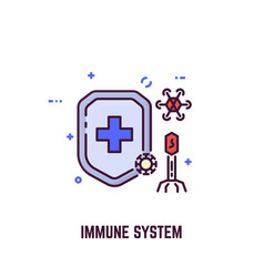 immune system and shield vector image