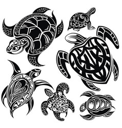 Reptile turtles vector