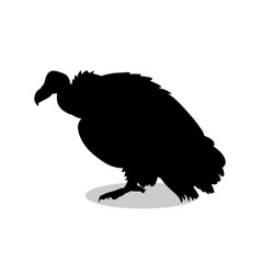 Vulture bird black silhouette animal vector