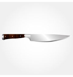 A kitchen knife vector
