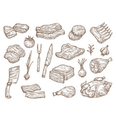 Butcher shop meat and barbecue cooking sketch vector