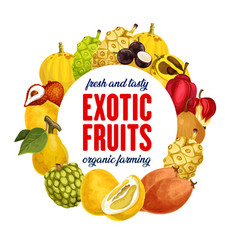 Exotic fruits icon for grocery shop or farm market vector