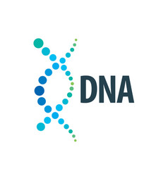 Logo dna vector