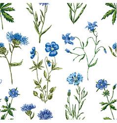 Pattern blue wildflowers vector