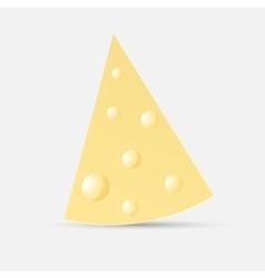 piece of cheese on an isolated white background vector image