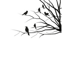 Silhouettes of crows on tree branches on white vector